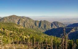 Πανόραμα ερήμων με μια συμπαθητική άποψη σε μια ευρεία κοιλάδα με τα μικρά νεκρά δέντρα λόφων στο πρώτο πλάνο στοκ εικόνα με δικαίωμα ελεύθερης χρήσης