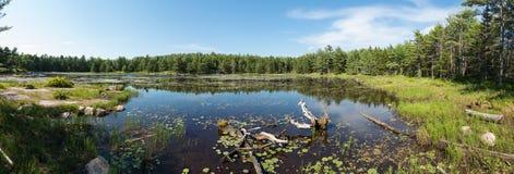 Πανόραμα λιμνών στοκ εικόνα με δικαίωμα ελεύθερης χρήσης