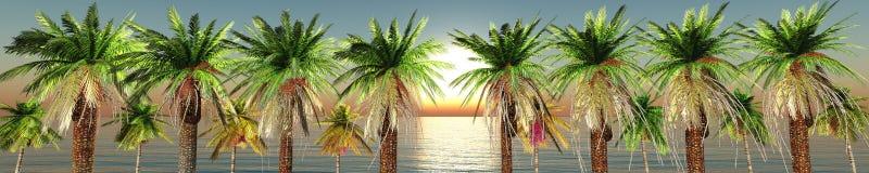 πανόραμα παραλιών τροπικό Ηλιοβασίλεμα εν πλω Στοκ εικόνες με δικαίωμα ελεύθερης χρήσης