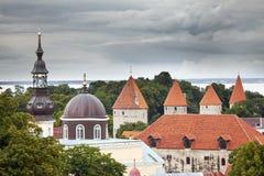 Πανόραμα πόλεων από μια γέφυρα παρατήρησης των παλαιών στεγών πόλεων Ταλίν Εσθονία Στοκ Εικόνες