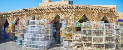 Πανόραμα της αγοράς πουλιών, Souq Waqif, Doha, Κατάρ Στοκ Φωτογραφίες