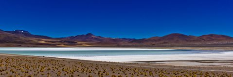 Πανόραμα της αλατισμένης λίμνης σε Atacama/τη Χιλή στοκ εικόνα