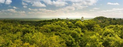 Πανόραμα της Γουατεμάλα Tikal στοκ φωτογραφίες με δικαίωμα ελεύθερης χρήσης