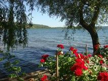 Πανόραμα της λίμνης Vico που βλέπει από την τράπεζα στο Latium στην Ιταλία στοκ φωτογραφία με δικαίωμα ελεύθερης χρήσης