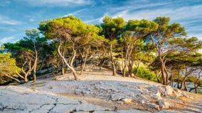 Πανόραμα της όμορφης φύσης Calanques στην κυανή ακτή της Γαλλίας Στοκ Εικόνες
