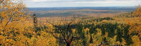 πανόραμα τοπίων φθινοπώρου Στοκ εικόνα με δικαίωμα ελεύθερης χρήσης