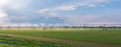 Πανόραμα του αυτοματοποιημένου συστήματος ψεκαστήρων άρδευσης καλλιέργειας στον καλλιεργημένο γεωργικό τομέα τοπίων στοκ φωτογραφίες