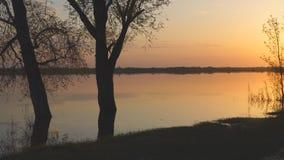Πανόραμα του ηλιοβασιλέματος στη λίμνη το καλοκαίρι απόθεμα βίντεο
