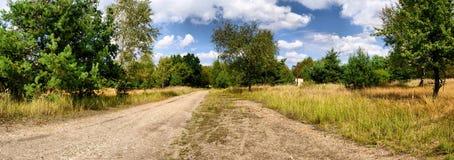 Πανόραμα του λιβαδιού και του δασικού δρόμου Στοκ φωτογραφίες με δικαίωμα ελεύθερης χρήσης