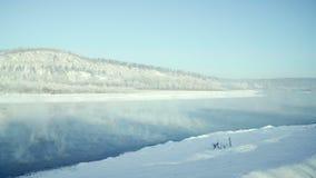 Πανόραμα του χειμερινού ποταμού Δέντρα στο χιόνι φιλμ μικρού μήκους