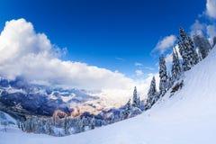 Πανόραμα των βουνών μετά από τις χιονοπτώσεις Στοκ Φωτογραφίες