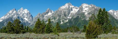 Πανόραμα των μεγάλων βουνών Teton στοκ φωτογραφίες με δικαίωμα ελεύθερης χρήσης