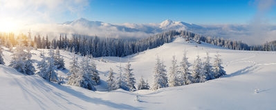 Πανόραμα των χειμερινών βουνών Στοκ Εικόνα