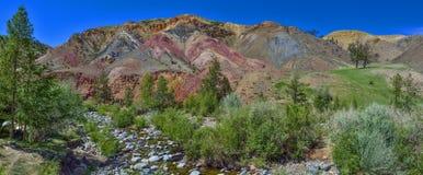 Πανόραμα των unrealy όμορφων ζωηρόχρωμων απότομων βράχων αργίλου σε Altai moun Στοκ φωτογραφία με δικαίωμα ελεύθερης χρήσης