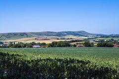 Πανόραμα Eaast Σάσσεξ, Αγγλία Άποψη προς το αναγνωριστικό σήμα Firle στοκ φωτογραφίες
