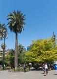 Πανόραμα Plaza de Armas της πλατείας στο Σαντιάγο de Χιλή Στοκ φωτογραφία με δικαίωμα ελεύθερης χρήσης