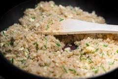 Παν σύνολο τηγανίσματος του τηγανισμένου ρυζιού με τα φρέσκα κρεμμύδια Στοκ Εικόνες