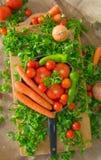 Παν σύνολο των λαχανικών όπως τα καρότα, ντομάτες, pepperoni, πράσινη σαλάτα, κρεμμύδι σε έναν καμβά Στοκ Φωτογραφία