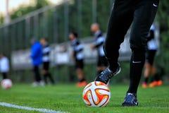 ΠΑΟΚ ΕΝΑΝΤΙΟΝ ΤΗΣ ΈΝΩΣΗΣ UEFA ΕΥΡΏΠΗ FIORENTINA Στοκ φωτογραφία με δικαίωμα ελεύθερης χρήσης