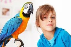 παπαγάλος παιδιών ara στοκ φωτογραφίες