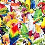 Παπαγάλοι Watercolor με το τροπικό άνευ ραφής σχέδιο λουλουδιών Στοκ Εικόνες