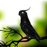 παπαγάλος πάρκων της Ινδονησίας κλάδων πουλιών του Μπαλί Στοκ φωτογραφία με δικαίωμα ελεύθερης χρήσης
