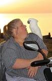 Παπαγάλος στον ώμο του ιδιοκτήτη Στοκ φωτογραφίες με δικαίωμα ελεύθερης χρήσης