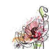 Παπαρουνών διανυσματική παφλασμών κάρτα θερινού υποβάθρου λουλουδιών ζωηρόχρωμη ελεύθερη απεικόνιση δικαιώματος