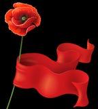 Παπαρούνα και κόκκινη κορδέλλα Στοκ Φωτογραφίες