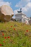 Παπαρούνες στη Ρώμη στοκ φωτογραφίες με δικαίωμα ελεύθερης χρήσης