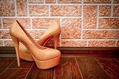 Παπούτσια γυναικών στοκ φωτογραφίες με δικαίωμα ελεύθερης χρήσης