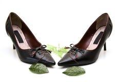 παπούτσια δέρματος στοκ εικόνα