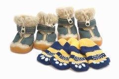 Παπούτσια και κάλτσες της Pet για τέσσερα πόδια, ενδυμασία της Pet Στοκ φωτογραφία με δικαίωμα ελεύθερης χρήσης