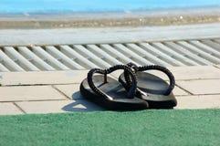 παπούτσια λιμνών Στοκ Εικόνα