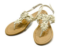 Παπούτσια με τα λουλούδια Στοκ φωτογραφίες με δικαίωμα ελεύθερης χρήσης