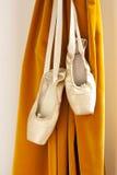 Παπούτσια μπαλέτου Pointe Στοκ Εικόνα