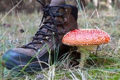 Παπούτσια τουριστών και μανιτάρι αγαρικών μυγών Στοκ φωτογραφίες με δικαίωμα ελεύθερης χρήσης