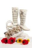 παπούτσια τσαντών Στοκ φωτογραφία με δικαίωμα ελεύθερης χρήσης