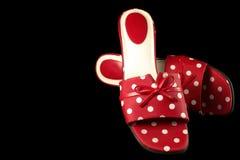Παπούτσια 2 Πόλκα-σημείων στοκ εικόνες