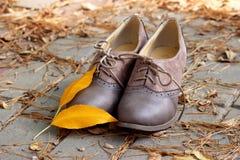 Παπούτσια Women's Στοκ Εικόνες