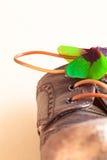 Παπούτσι για τον ευτυχή περίπατο Στοκ Εικόνες