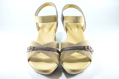 Παπούτσι γυναικών Στοκ Εικόνα
