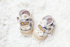 Παπούτσι μωρών κουνελιών Στοκ Εικόνες