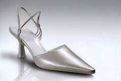 παπούτσι Στοκ φωτογραφία με δικαίωμα ελεύθερης χρήσης