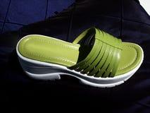 παπούτσι Στοκ εικόνες με δικαίωμα ελεύθερης χρήσης