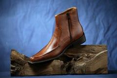 παπούτσι Στοκ Φωτογραφίες