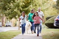 Παππούδες και γιαγιάδες και εγγονές που περπατούν το σκυλί κατά μήκος της οδού στοκ φωτογραφίες με δικαίωμα ελεύθερης χρήσης