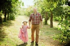 Παππούς με την εγγονή με τη Apple στον οπωρώνα της Apple Στοκ εικόνα με δικαίωμα ελεύθερης χρήσης