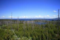 Παράβλεψη της λίμνης Yellowstone Στοκ φωτογραφία με δικαίωμα ελεύθερης χρήσης