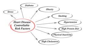 Παράγοντες κινδύνου καρδιακών παθήσεων ελεύθερη απεικόνιση δικαιώματος